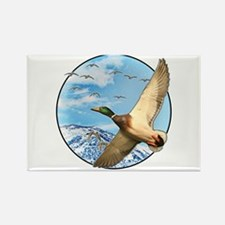 Waterfowl 2 Rectangle Magnet