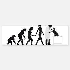 evolution of man female veterinarian Bumper Sticke