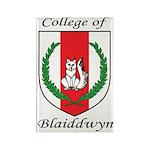 Blaiddwyn Rectangle Magnet (100 pack)