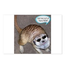 Out of here meerkat Postcards (Package of 8)
