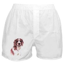 Welsh Springer Spaniel Boxer Shorts