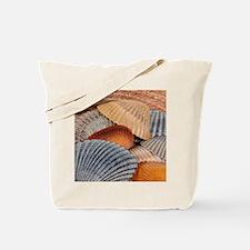 Cute Shells Tote Bag