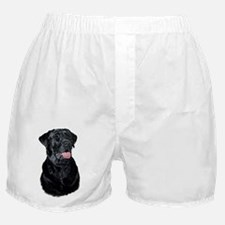 Cute Black labrador Boxer Shorts