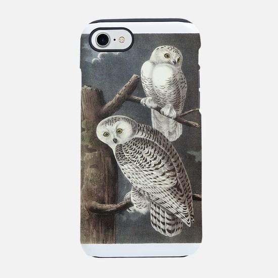 Snowy Owls iPhone 8/7 Tough Case