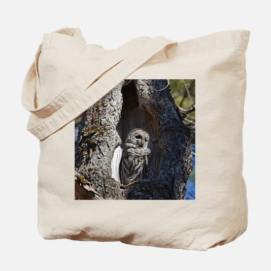 Owl in tree hollow Tote Bag