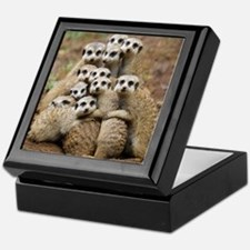 Meercat Family Keepsake Box