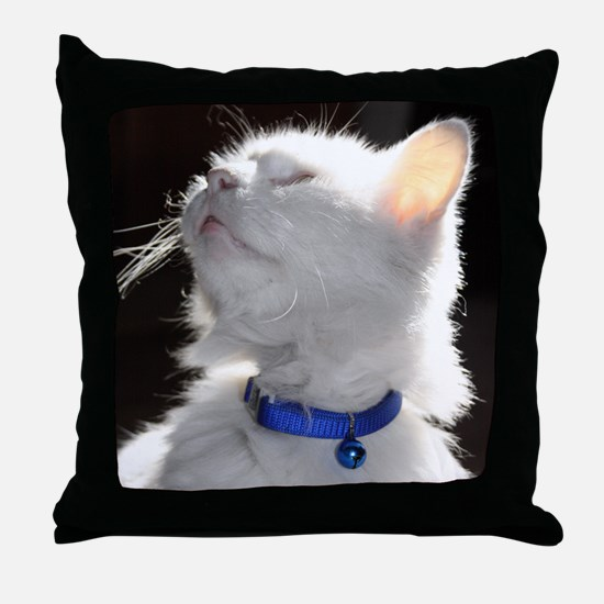 BDP Throw Pillow