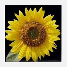 Sunflower w/ Blk Tile Coaster