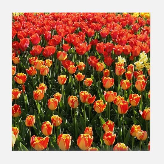 Bright Tulips Tile Coaster