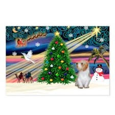 Xmas Magic/PBGV (#3) Postcards (Package of 8)