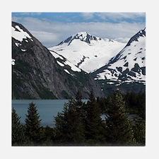 Unique Alaska Tile Coaster