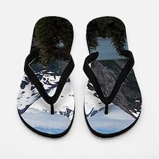 Portage Lake and mountains, Alaska, USA Flip Flops
