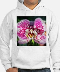 Pink-Spotted Orchid Hoodie