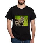 Racing Stripes Dark T-Shirt