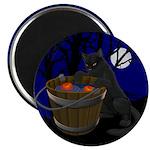 Halloween Magnet Black Cat Halloween Gifts
