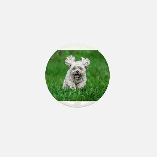 HAPPY DOG Mini Button