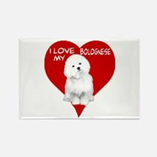 Cute Bolognese Rectangle Magnet (10 pack)