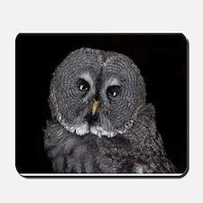 OWL ON BLACK BACKGROUND Mousepad
