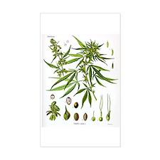 Cannabis Sativa Rectangle Decal