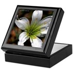 """Flower"" Keepsake Box"