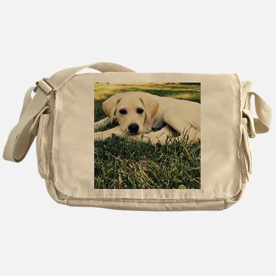 Cute Lab puppy Messenger Bag