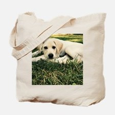Unique Yellow lab Tote Bag