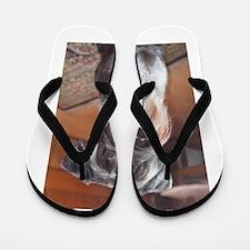 Standard Schnauzer Flip Flops