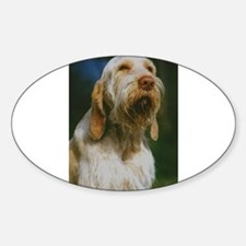 spinone italiano Decal