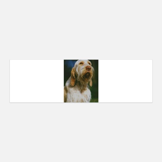spinone italiano Wall Decal