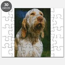 spinone italiano Puzzle