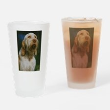 spinone italiano Drinking Glass
