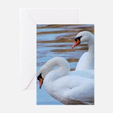 Beautiful Swans Greeting Cards