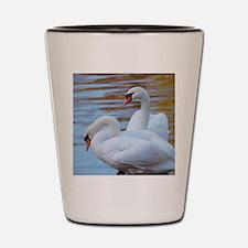 Beautiful Swans Shot Glass