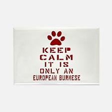 Keep Calm It Is European Burmese Rectangle Magnet