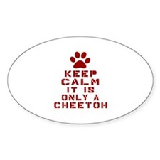 Keep Calm It Is Cheetoh Cat Decal