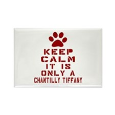 Keep Calm It Is Chantilly Tiffany Rectangle Magnet