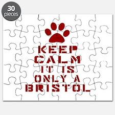 Keep Calm It Is Bristol Cat Puzzle