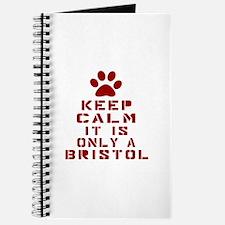 Keep Calm It Is Bristol Cat Journal