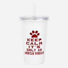 Keep Calm It Is Americ Acrylic Double-wall Tumbler