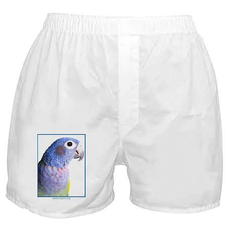 Blue-Headed Pionus - Boxer Shorts