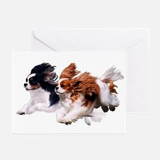 Cavaliers - Color Greeting Cards (Pk of 20)