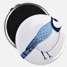 Blue JAy Magnets