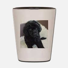 Cute Poodle Shot Glass