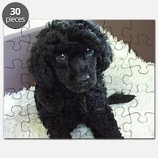 Funny Poodle Puzzle