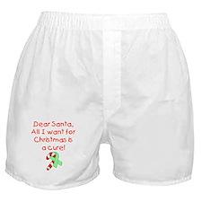Christmas Boxer Shorts