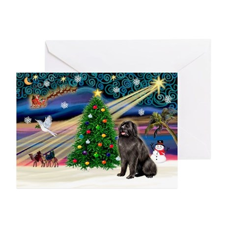 Xmas Magic/Newfie (#2) Greeting Cards (Pk of 10)