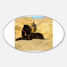 Funny Labrador playing Sticker (Oval)