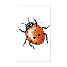 Ladybug Beetle Rectangle Stickers