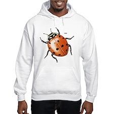 Ladybug Beetle Hoodie
