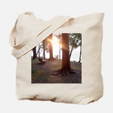 Silver Lake Morning Tote Bag
